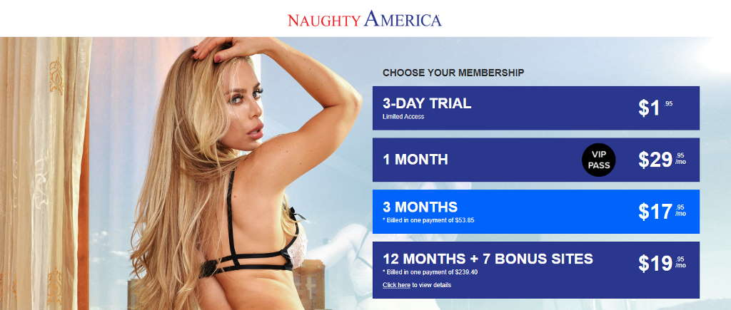 Naughty America discount
